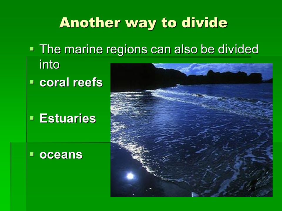 Another way to divide The marine regions can also be divided into The marine regions can also be divided into coral reefs coral reefs Estuaries Estuar