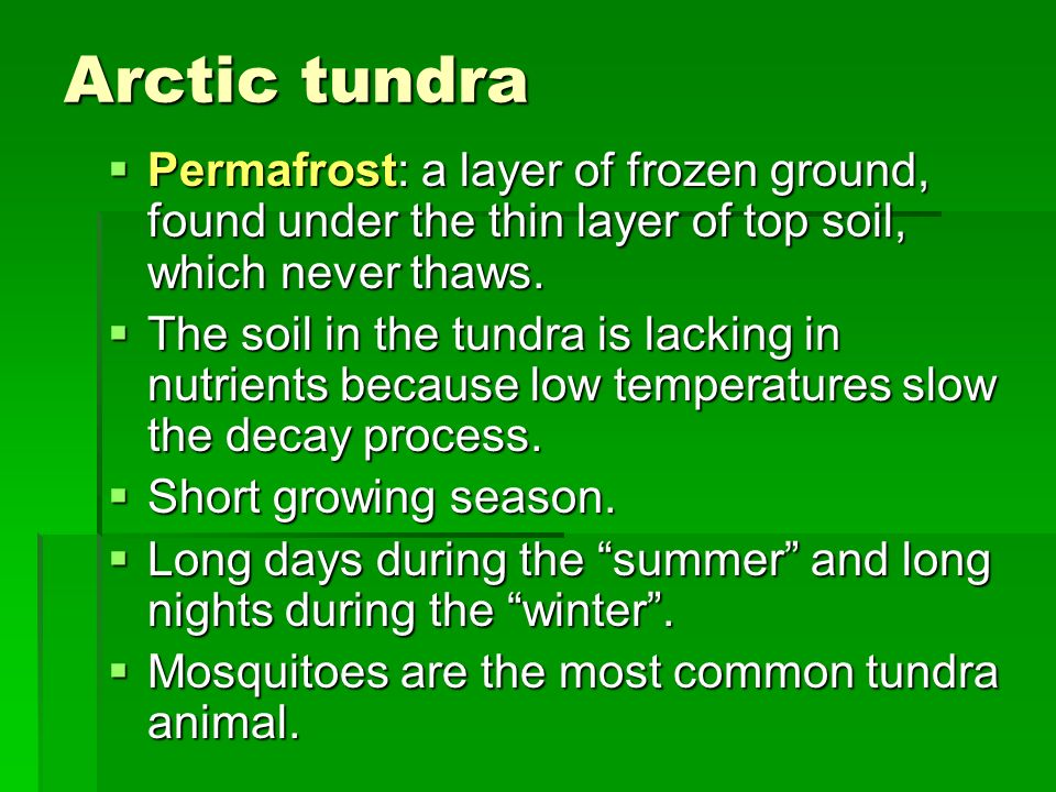 Arctic tundra Permafrost: a layer of frozen ground, found under the thin layer of top soil, which never thaws. Permafrost: a layer of frozen ground, f