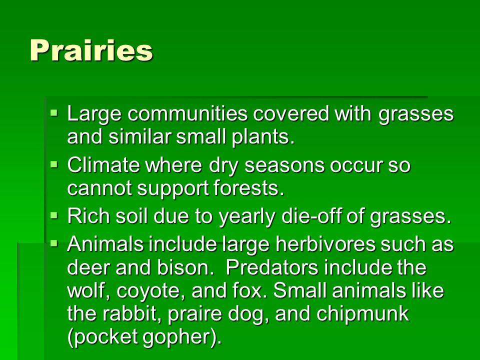 Prairies Large communities covered with grasses and similar small plants. Large communities covered with grasses and similar small plants. Climate whe
