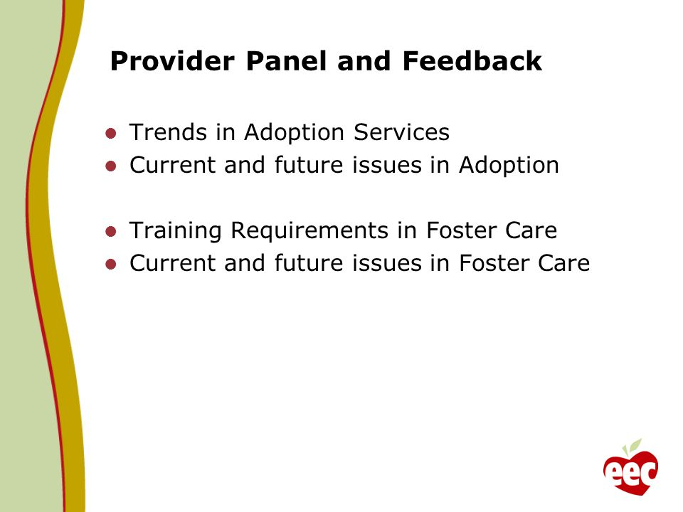 Provider Panel and Feedback Trends in Adoption Services Current and future issues in Adoption Training Requirements in Foster Care Current and future issues in Foster Care