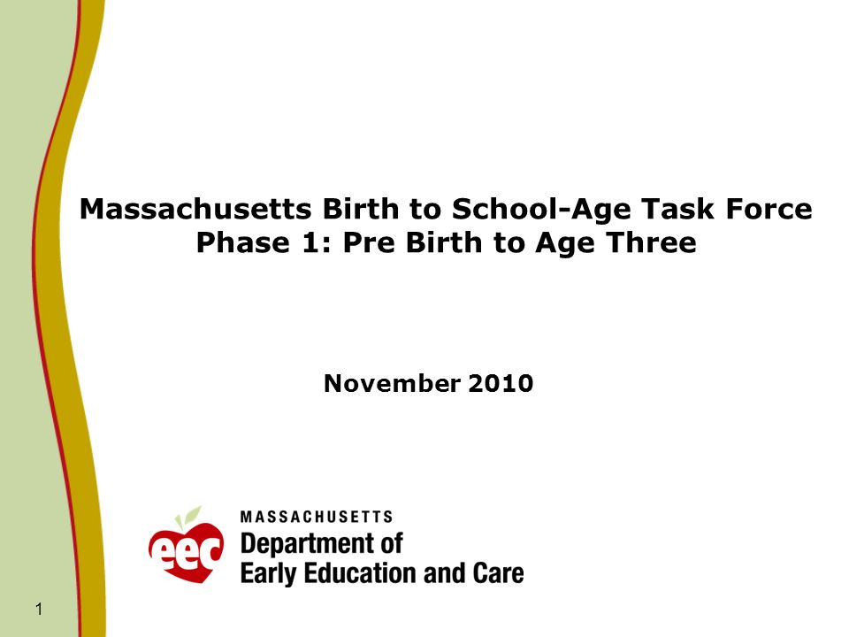 1 Massachusetts Birth to School-Age Task Force Phase 1: Pre Birth to Age Three November 2010