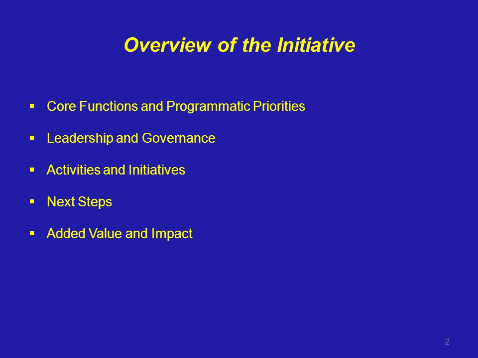 Overview of the Initiative Core Functions and Programmatic Priorities Leadership and Governance Activities and Initiatives Next Steps Added Value and Impact 2