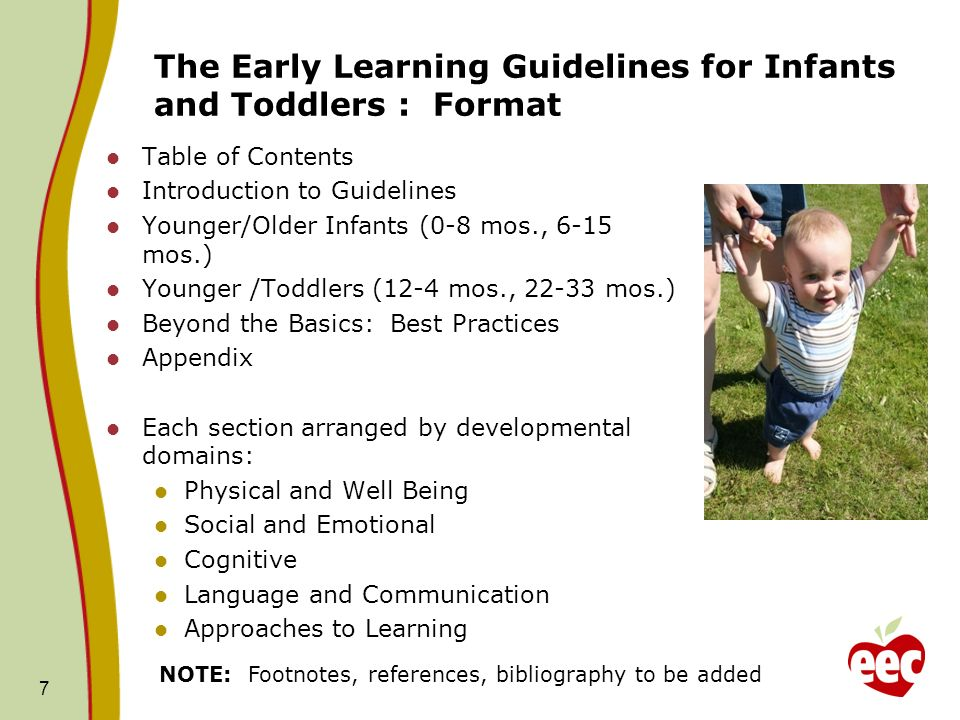The Early Learning Guidelines for Infants and Toddlers: Content Area Expansion MassAEYC will expand the content in the areas of: Dual language learners Supporting family culture Inclusion and Special needs Home visiting Integration between domains Partnerships with families Consumerism Biting and Behavior Management Men as teachers 18