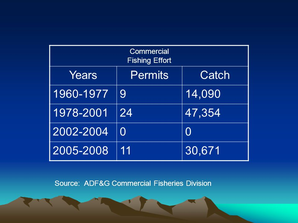 Commercial Fishing Effort YearsPermitsCatch 1960-1977914,090 1978-20012447,354 2002-200400 2005-20081130,671 Source: ADF&G Commercial Fisheries Division