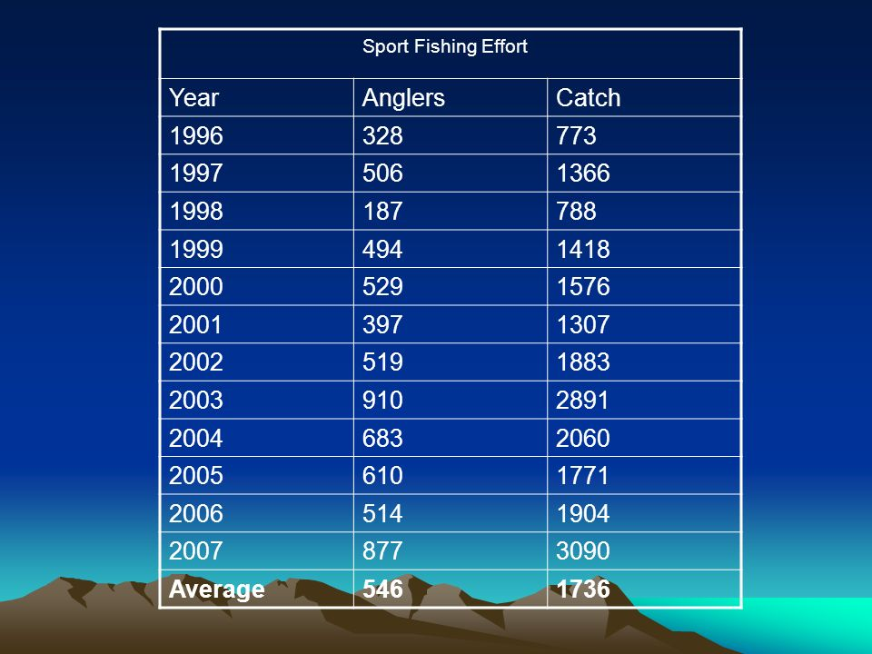 Sport Fishing Effort YearAnglersCatch 1996328773 19975061366 1998187788 19994941418 20005291576 20013971307 20025191883 20039102891 20046832060 20056101771 20065141904 20078773090 Average5461736
