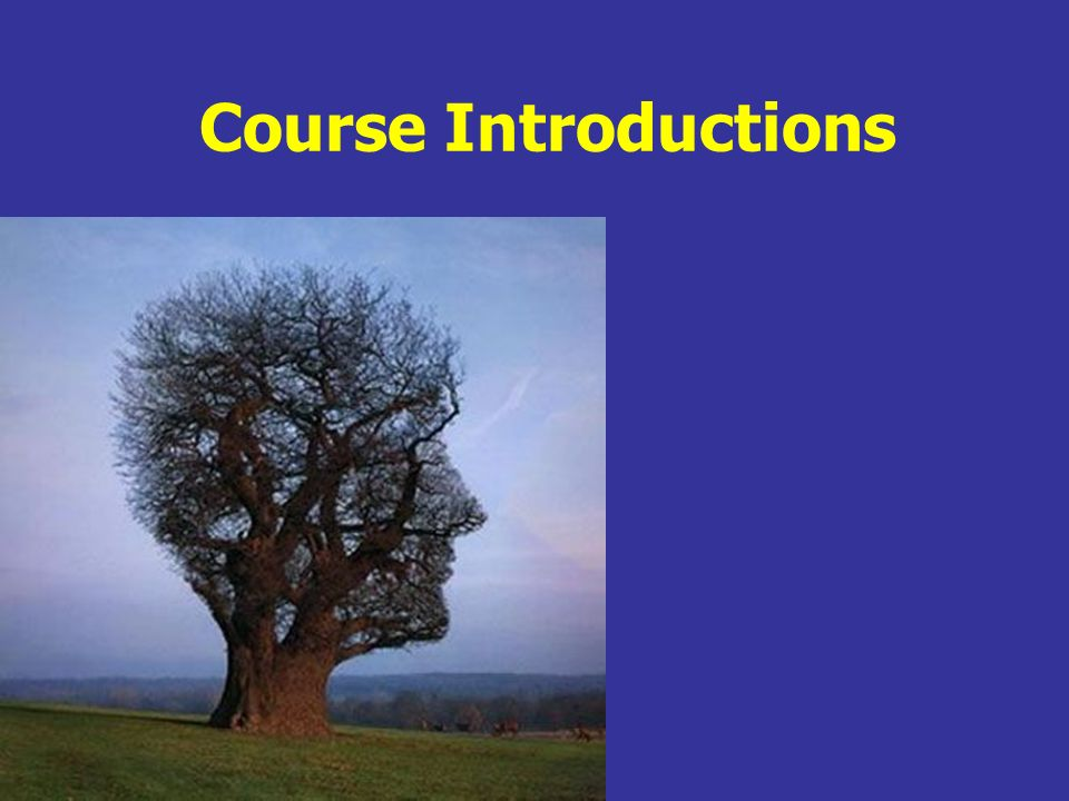Course Introductions