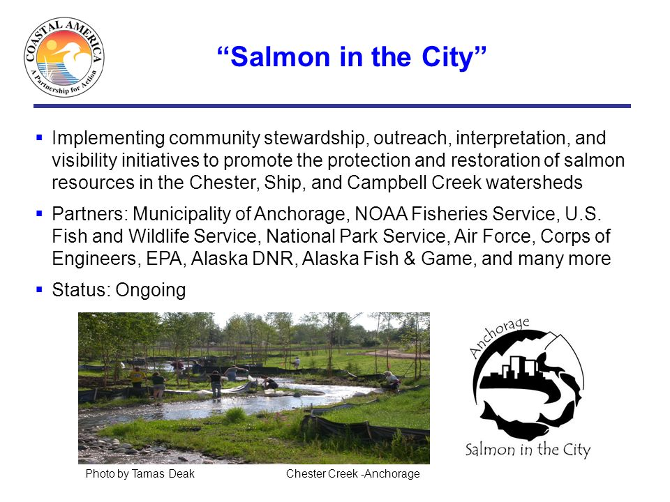 Salmon in the City Implementing community stewardship, outreach, interpretation, and visibility initiatives to promote the protection and restoration