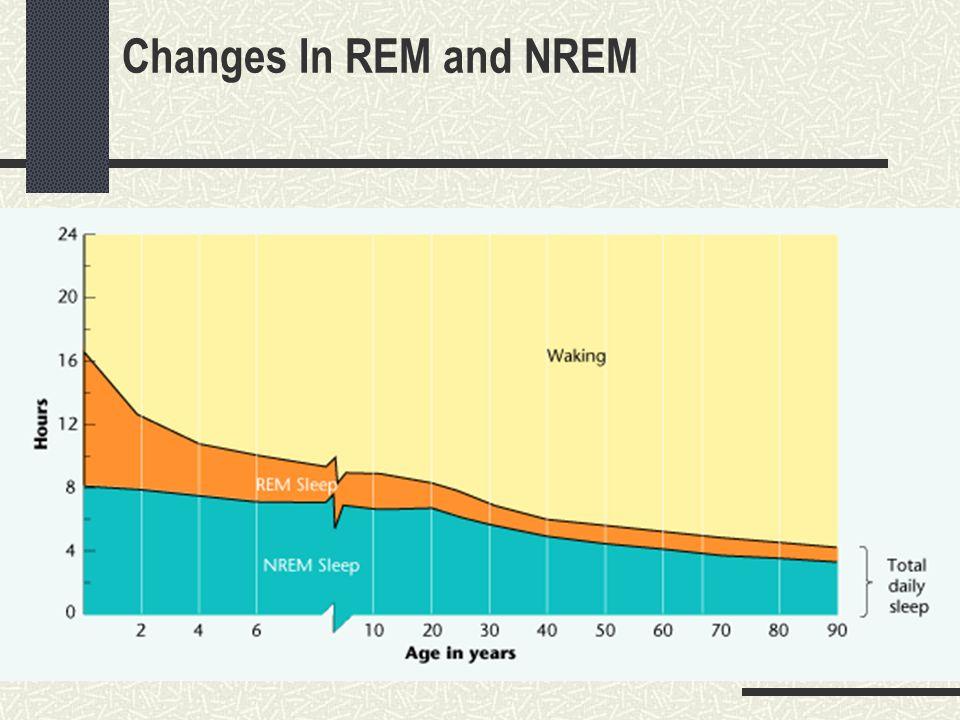 Changes In REM and NREM
