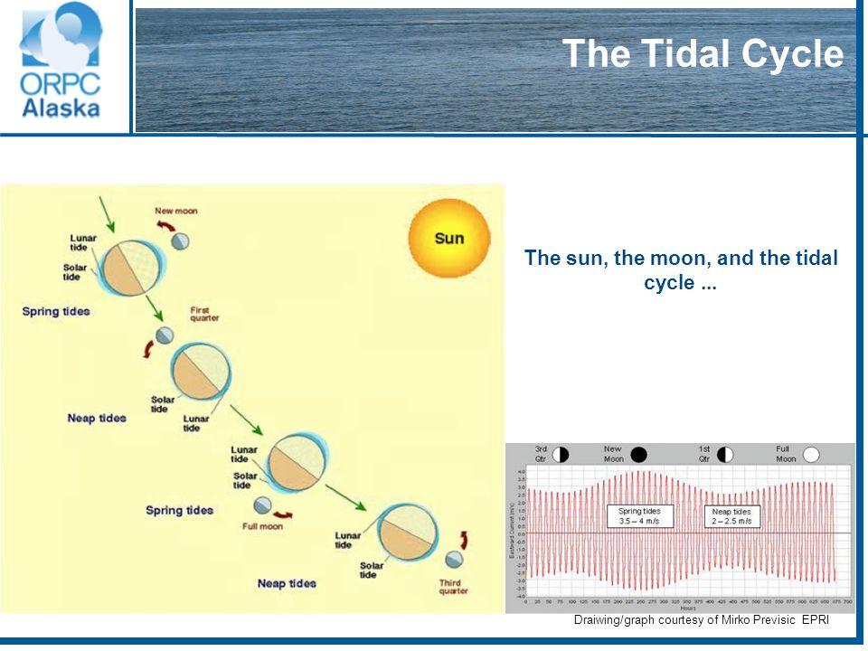 66 Velocity varying through tidal cycles Graph courtesy of Mirko Previsic, EPRI
