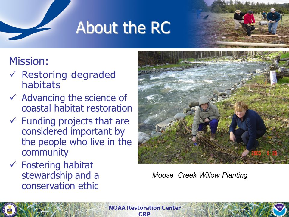 NOAA Restoration Center CRP About the RC About the RC Mission: Restoring degraded habitats Advancing the science of coastal habitat restoration Fundin