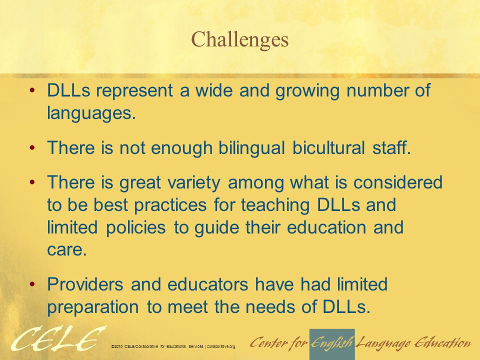 Challenges DLLs represent a wide and growing number of languages.