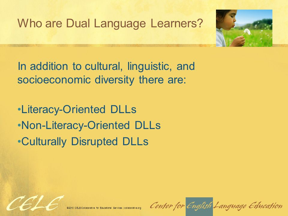 ©2010 CELE/Collaborative for Educational Services | collaborative.org Who are Dual Language Learners.