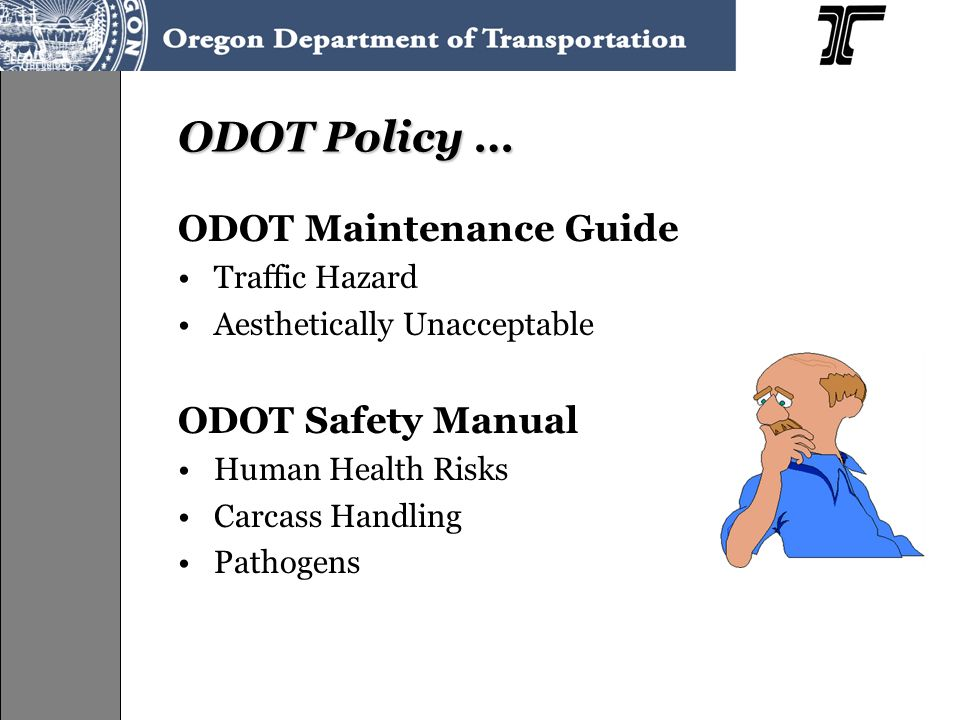 ODOT Policy … ODOT Maintenance Guide Traffic Hazard Aesthetically Unacceptable ODOT Safety Manual Human Health Risks Carcass Handling Pathogens