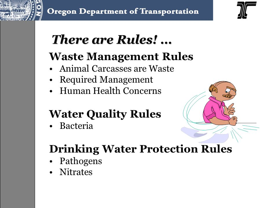 There are Rules! … Waste Management Rules Animal Carcasses are Waste Required Management Human Health Concerns Water Quality Rules Bacteria Drinking W