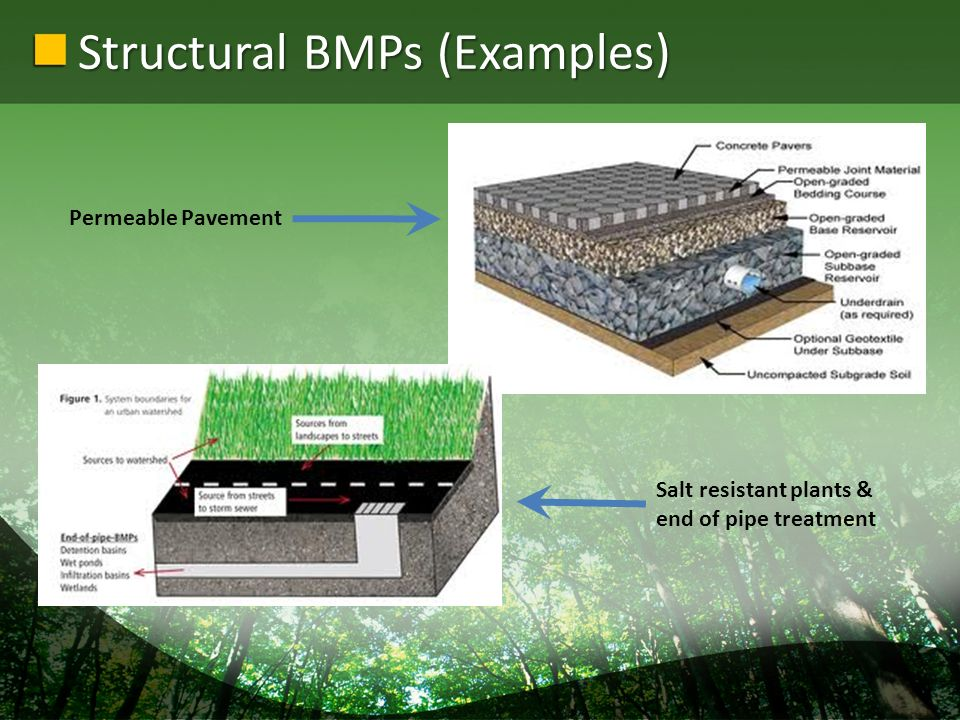 Structural BMPs (Examples) Permeable Pavement Salt resistant plants & end of pipe treatment