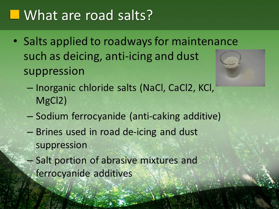 Infrastructure Impacts of Road Salts Chloride ions in salt accelerates corrosion Corrosivity of road salt adversely impacts motor vehicles and infrastructure – Damaging to bridge decking.
