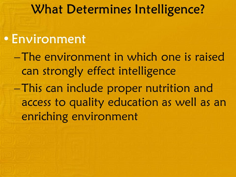 What Determines Intelligence.