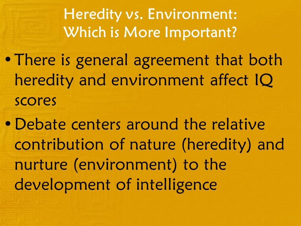 Heredity vs. Environment: Which is More Important? There is general agreement that both heredity and environment affect IQ scores Debate centers aroun