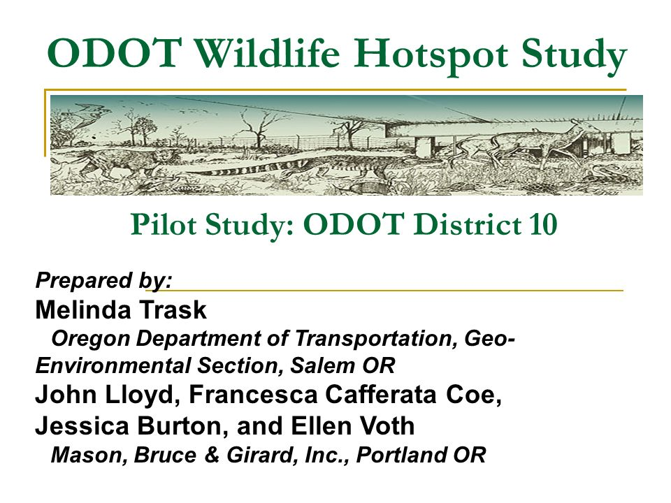 ODOT Wildlife Hotspot Study Pilot Study: ODOT District 10 Prepared by: Melinda Trask Oregon Department of Transportation, Geo- Environmental Section, Salem OR John Lloyd, Francesca Cafferata Coe, Jessica Burton, and Ellen Voth Mason, Bruce & Girard, Inc., Portland OR