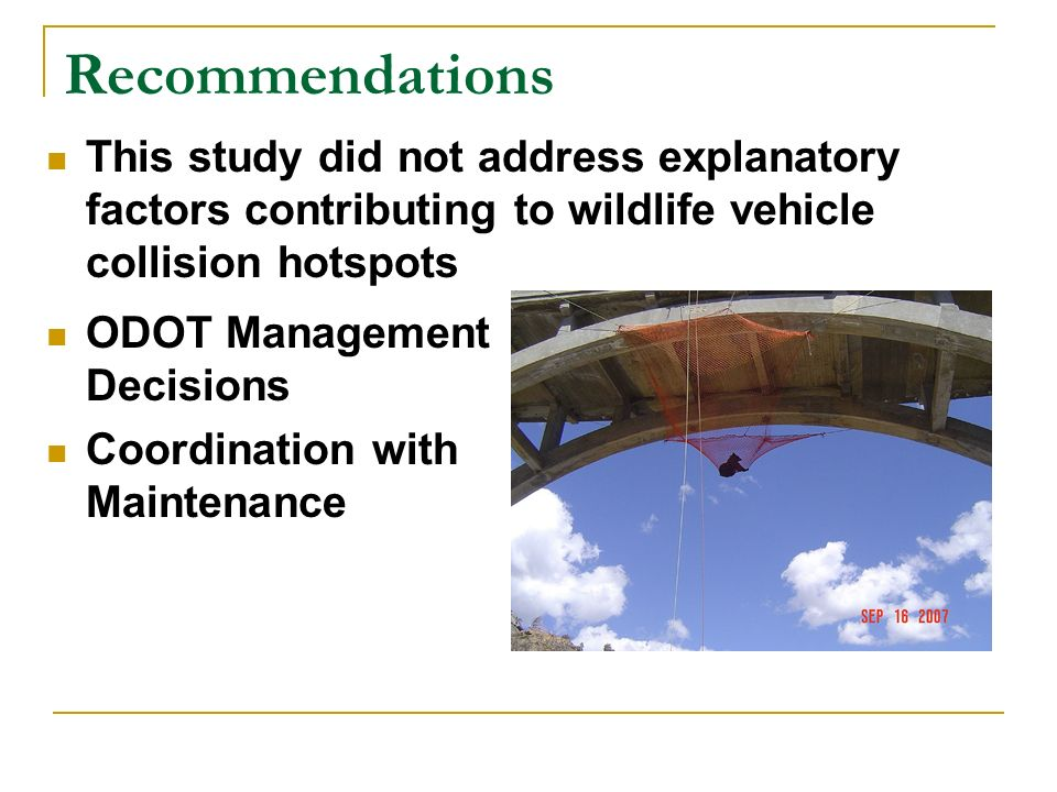 Recommendations This study did not address explanatory factors contributing to wildlife vehicle collision hotspots ODOT Management Decisions Coordination with Maintenance