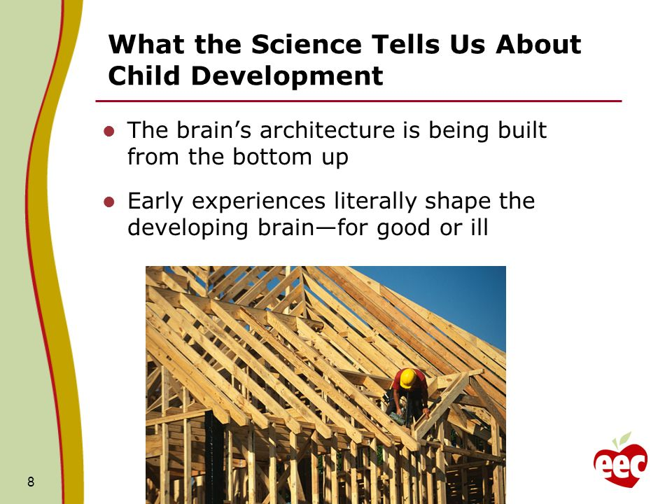 What the Science Tells Us About Child Development The brains architecture is being built from the bottom up Early experiences literally shape the deve