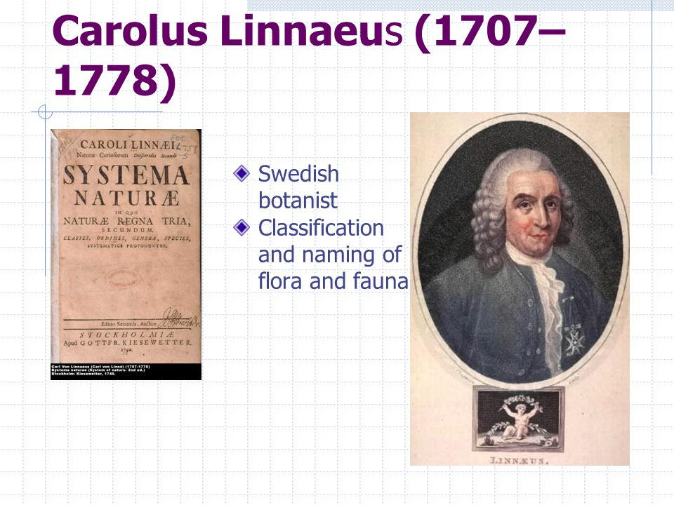 Carolus Linnaeus (1707– 1778) Swedish botanist Classification and naming of flora and fauna