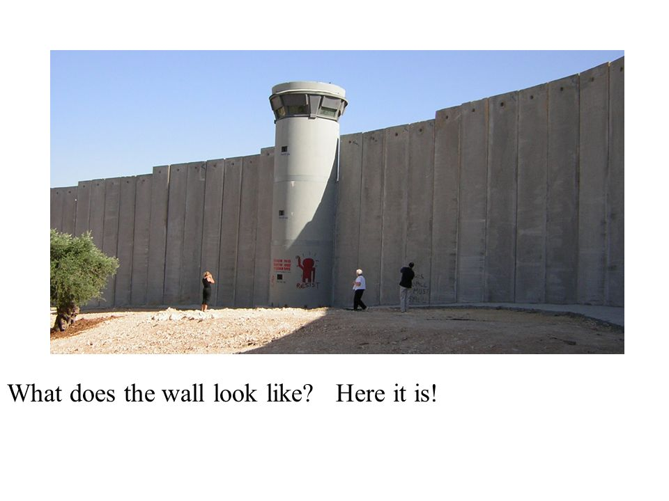 What does the wall look like? Here it is!