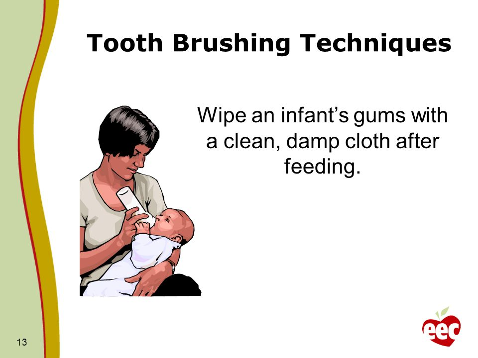 Tooth Brushing Techniques 13 Wipe an infants gums with a clean, damp cloth after feeding.