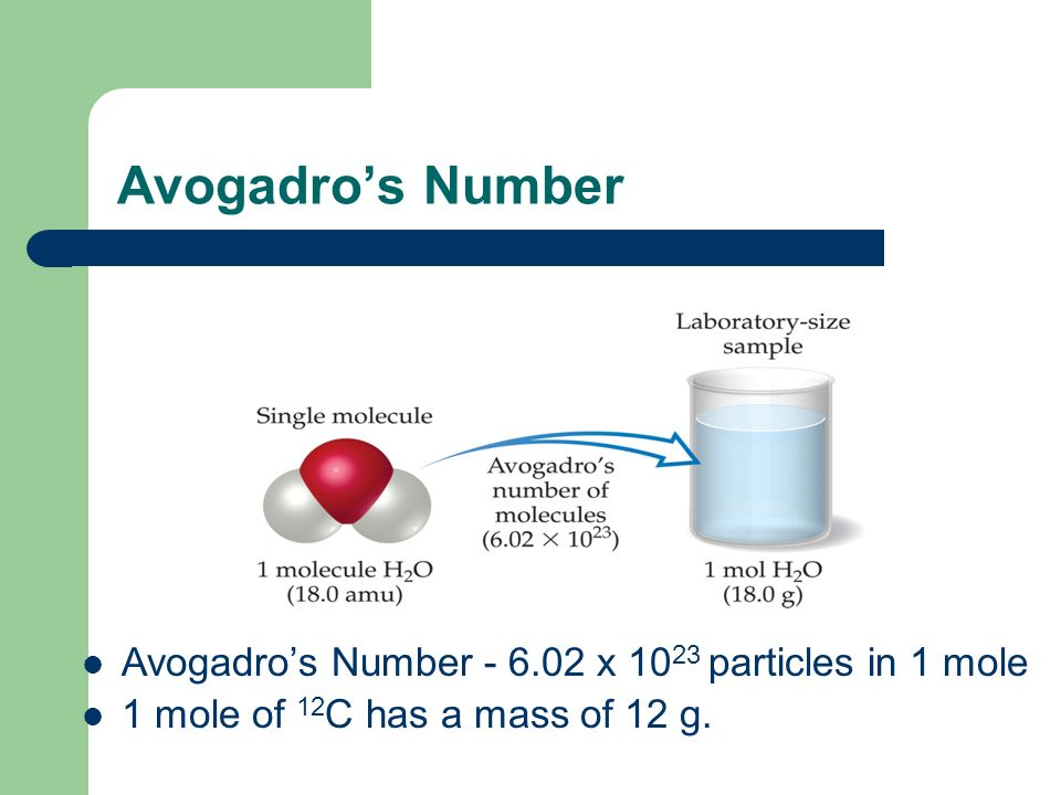 Avogadros Number Avogadros Number - 6.02 x 10 23 particles in 1 mole 1 mole of 12 C has a mass of 12 g.