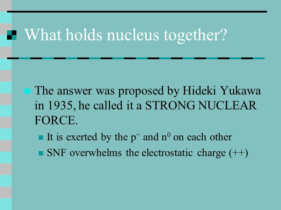 What holds nucleus together? The answer was proposed by Hideki Yukawa in 1935, he called it a STRONG NUCLEAR FORCE. It is exerted by the p + and n 0 o