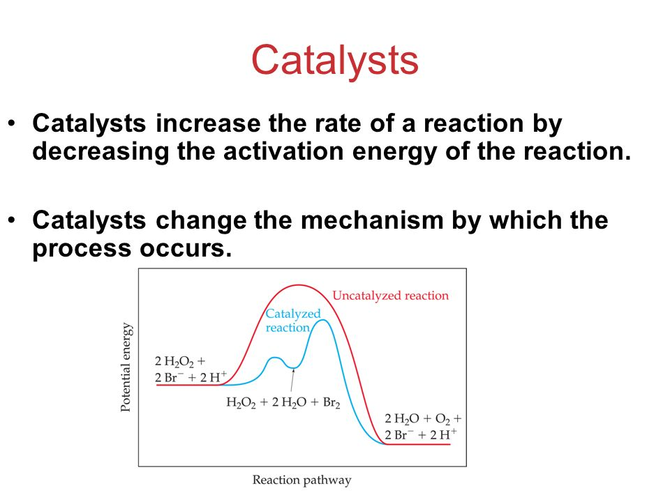 Catalysts Catalysts increase the rate of a reaction by decreasing the activation energy of the reaction. Catalysts change the mechanism by which the p