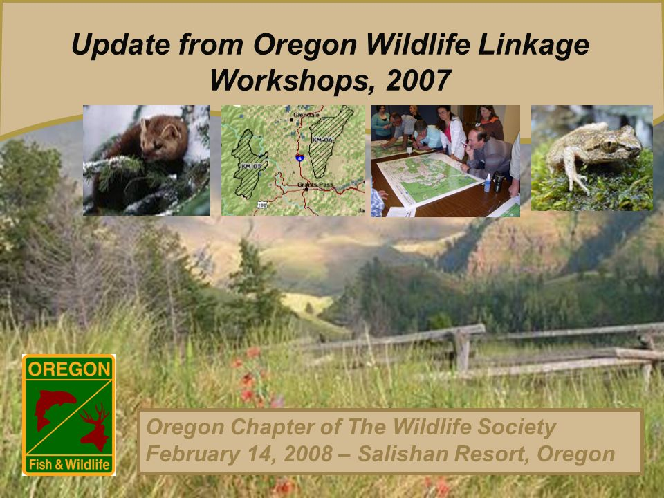 Update from Oregon Wildlife Linkage Workshops, 2007 Oregon Chapter of The Wildlife Society February 14, 2008 – Salishan Resort, Oregon