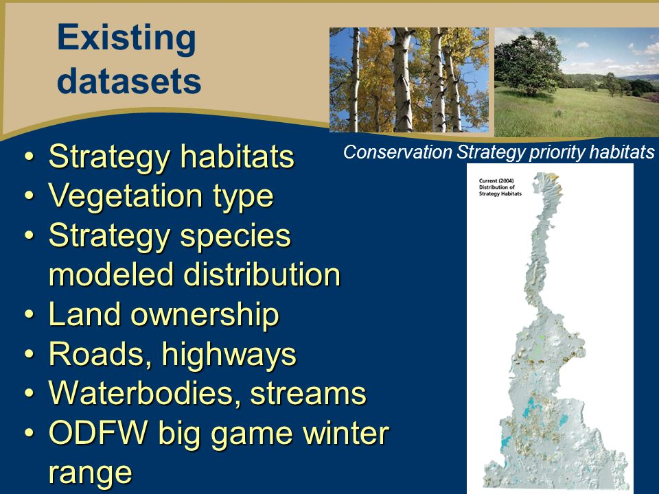 Existing datasets Strategy habitatsStrategy habitats Vegetation typeVegetation type Strategy species modeled distributionStrategy species modeled distribution Land ownershipLand ownership Roads, highwaysRoads, highways Waterbodies, streamsWaterbodies, streams ODFW big game winter rangeODFW big game winter range Conservation Strategy priority habitats