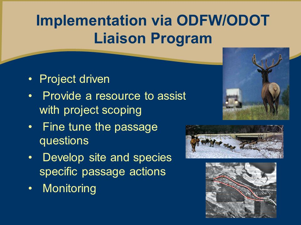 Implementation via ODFW/ODOT Liaison Program Project driven Provide a resource to assist with project scoping Fine tune the passage questions Develop site and species specific passage actions Monitoring