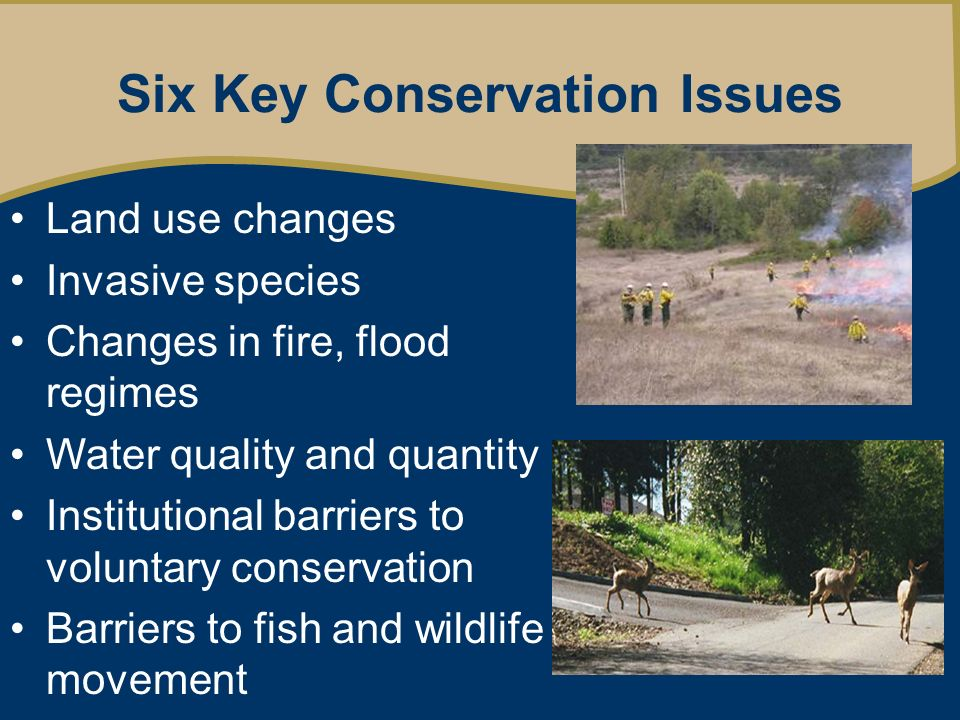 Six Key Conservation Issues Land use changes Invasive species Changes in fire, flood regimes Water quality and quantity Institutional barriers to voluntary conservation Barriers to fish and wildlife movement
