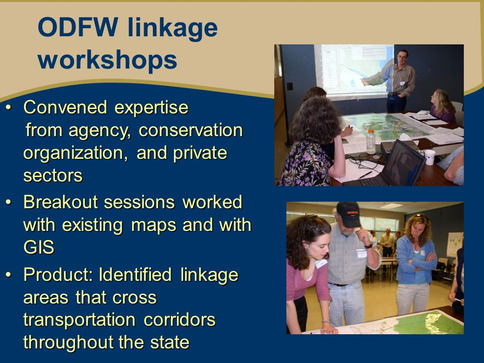 ODFW linkage workshops Convened expertiseConvened expertise from agency, conservation organization, and private sectors from agency, conservation organization, and private sectors Breakout sessions worked with existing maps and with GISBreakout sessions worked with existing maps and with GIS Product: Identified linkage areas that cross transportation corridors throughout the stateProduct: Identified linkage areas that cross transportation corridors throughout the state