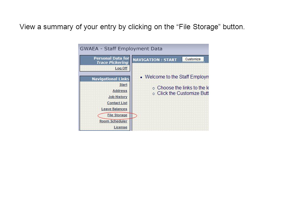 View a summary of your entry by clicking on the File Storage button.