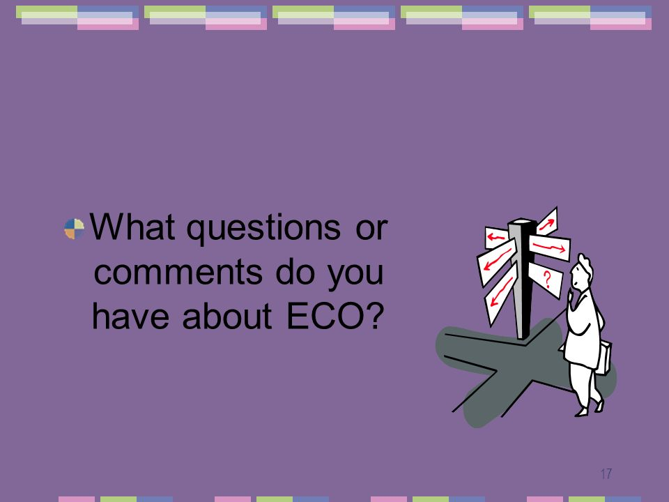 17 What questions or comments do you have about ECO?