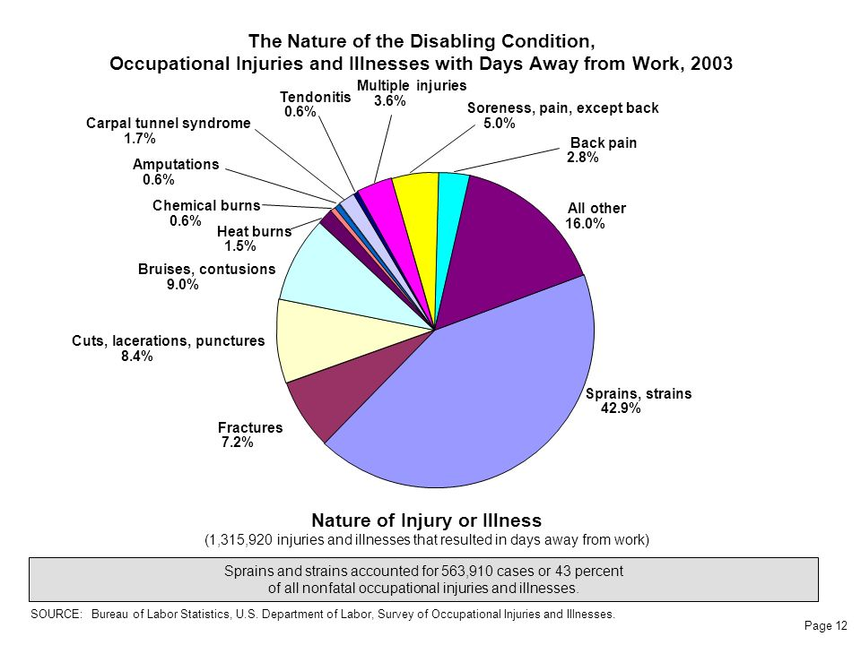 Page 12 The Nature of the Disabling Condition, Occupational Injuries and Illnesses with Days Away from Work, 2003 Nature of Injury or Illness (1,315,920 injuries and illnesses that resulted in days away from work) Sprains and strains accounted for 563,910 cases or 43 percent of all nonfatal occupational injuries and illnesses.