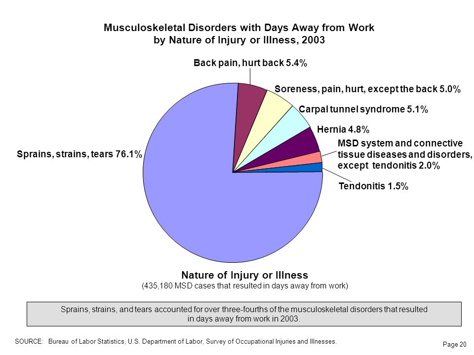 Page 20 Musculoskeletal Disorders with Days Away from Work by Nature of Injury or Illness, 2003 Sprains, strains, and tears accounted for over three-fourths of the musculoskeletal disorders that resulted in days away from work in 2003.