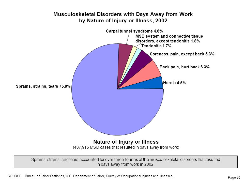 Page 20 Musculoskeletal Disorders with Days Away from Work by Nature of Injury or Illness, 2002 Sprains, strains, and tears accounted for over three-fourths of the musculoskeletal disorders that resulted in days away from work in 2002.