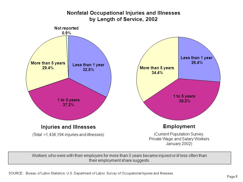 Page 8 Less than 1 year 32.5% 1 to 5 years 37.2% More than 5 years 29.4% Not reported 0.9% Nonfatal Occupational Injuries and Illnesses by Length of Service, 2002 Workers who were with their employers for more than 5 years became injured or ill less often than their employment share suggests.