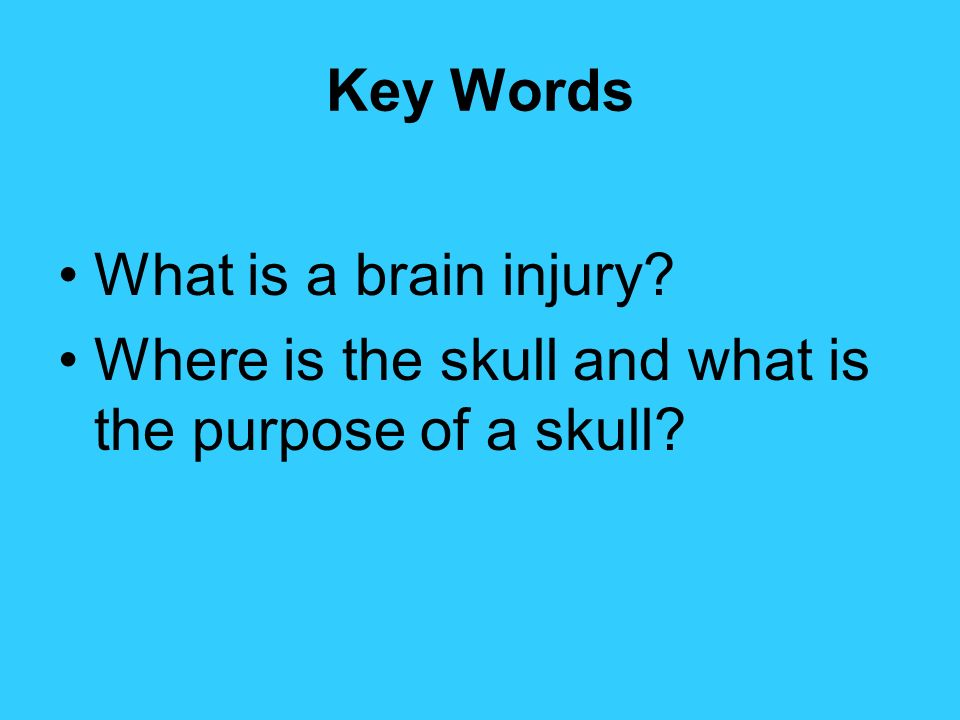 Key Words What is a brain injury? Where is the skull and what is the purpose of a skull?