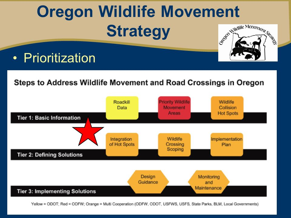 Oregon Wildlife Movement Strategy Prioritization