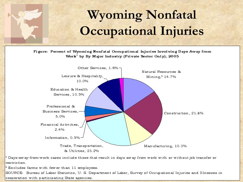 5 Wyoming Nonfatal Occupational Injuries