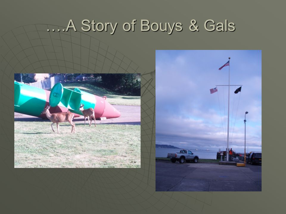 ….A Story of Bouys & Gals