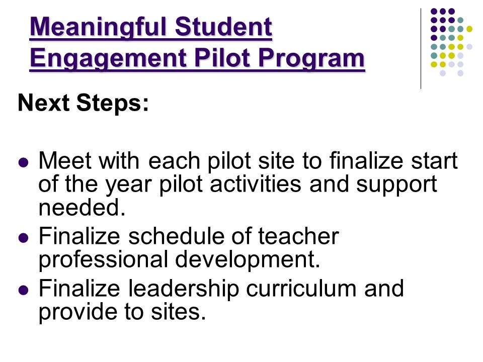 Meaningful Student Engagement Pilot Program Next Steps: Meet with each pilot site to finalize start of the year pilot activities and support needed.