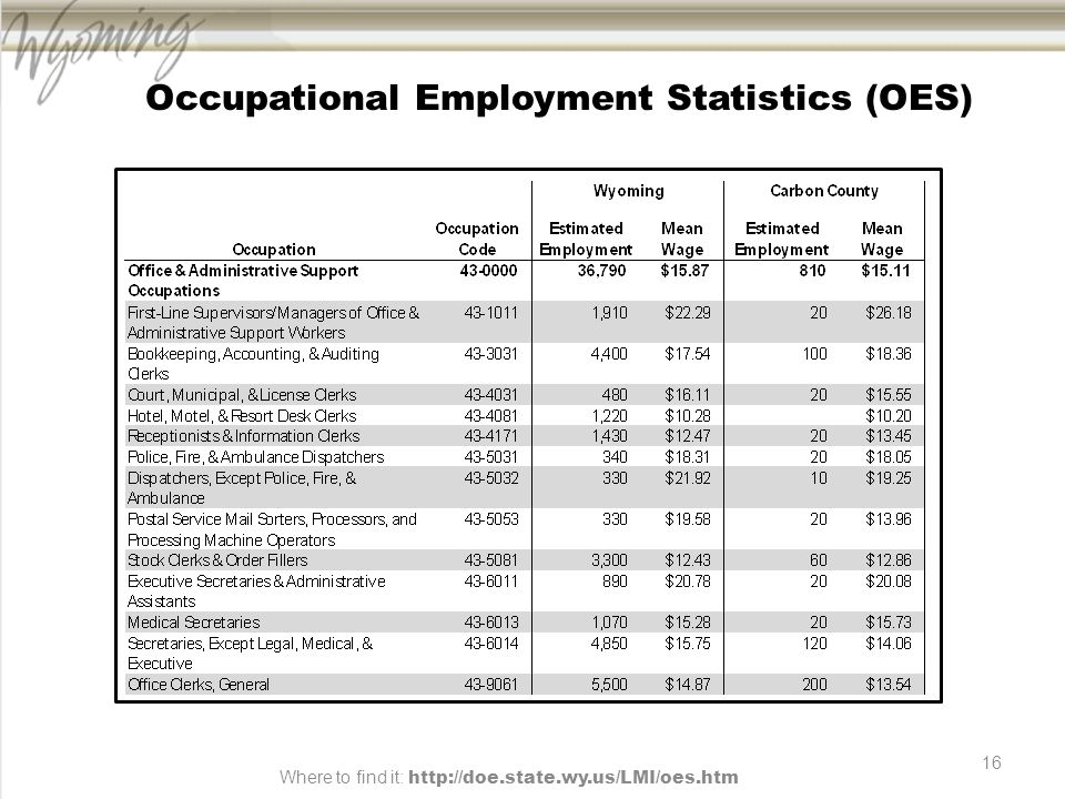 16 Occupational Employment Statistics (OES) Where to find it: http://doe.state.wy.us/LMI/oes.htm