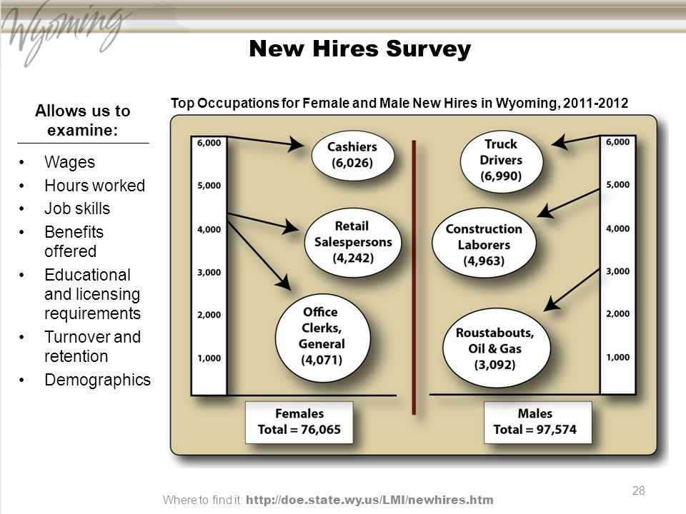 28 New Hires Survey Wages Hours worked Job skills Benefits offered Educational and licensing requirements Turnover and retention Demographics Allows us to examine: Top Occupations for Female and Male New Hires in Wyoming, 2011-2012 Where to find it: http://doe.state.wy.us/LMI/newhires.htm