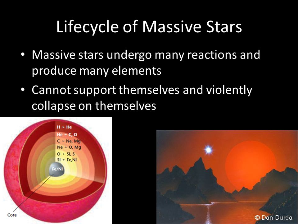 Lifecycle of Massive Stars Massive stars undergo many reactions and produce many elements Cannot support themselves and violently collapse on themselves